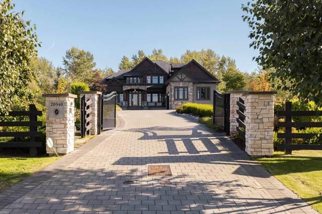 20340 2 Avenue, Langley, BC V2Z 0A3 (#R2620856) :: 604 Home Group