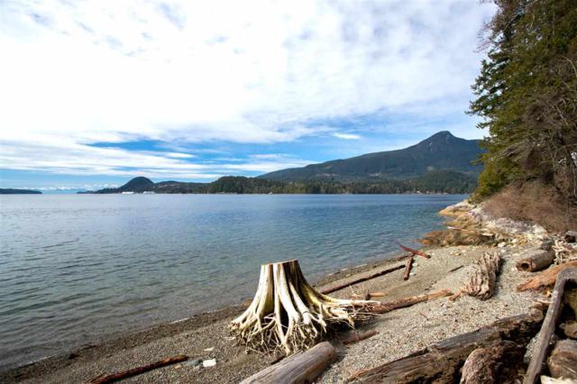LOT A Gambier Island, Gambier Island, BC V0V 0V0 (#R2343263) :: Vancouver Real Estate