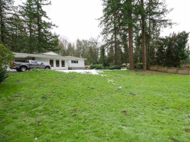 8880 Harvie Road, Surrey, BC V4N 4B8 (#R2364515) :: Royal LePage West Real Estate Services