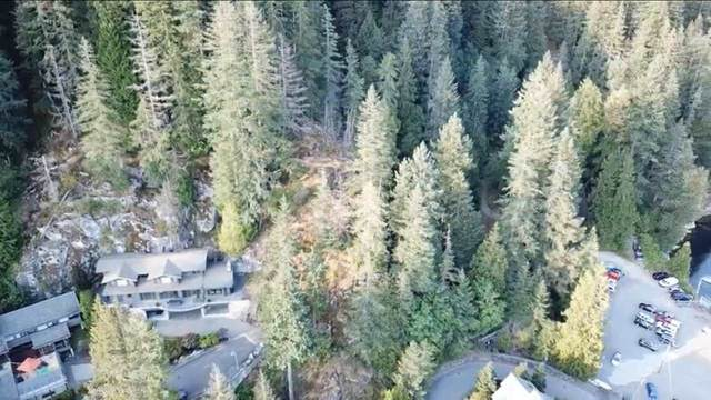 Panorama Drive Lot G, North Vancouver, BC V7G 1T8 (#R2480559) :: Homes Fraser Valley