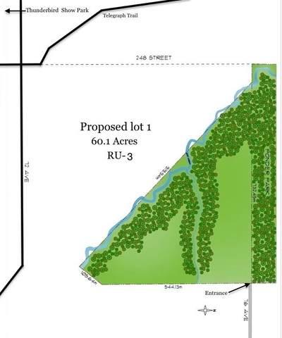 76 Avenue Lt.1, Langley, BC V4W 1J1 (#R2500233) :: Ben D'Ovidio Personal Real Estate Corporation | Sutton Centre Realty