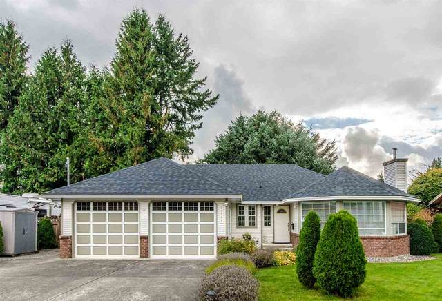 20282 Chatwin Avenue, Maple Ridge, BC V2X 4G3 (#R2510459) :: 604 Home Group
