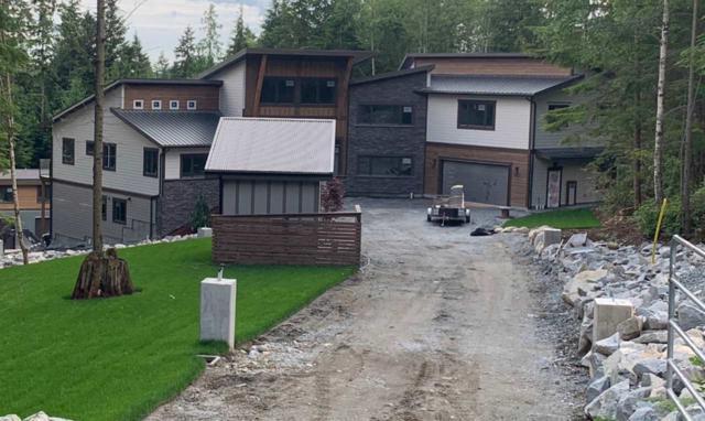 28490 123 Avenue, Maple Ridge, BC V2W 1M1 (#R2359991) :: Vancouver Real Estate