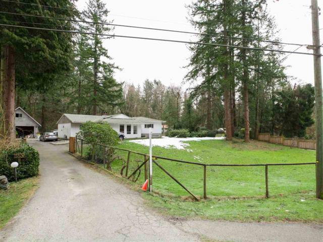 8880 Harvie Road, Surrey, BC V4N 4B8 (#R2364515) :: Vancouver Real Estate