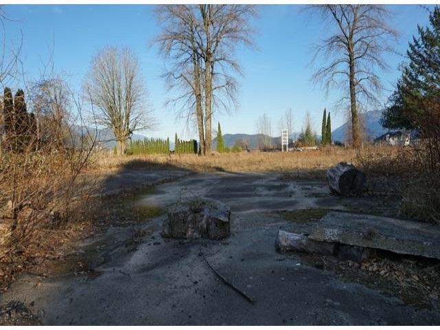 470 Esplanade Avenue, Harrison Hot Springs, BC V0M 1K0 (#R2176613) :: HomeLife Glenayre Realty