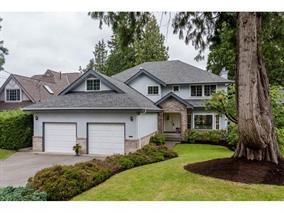 20577 Grade Crescent, Langley, BC V3A 4K1 (#R2180469) :: HomeLife Glenayre Realty