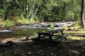 13075 Alouette Road, Maple Ridge, BC V4R 1R8 (#R2181347) :: HomeLife Glenayre Realty