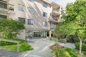 8511 Ackroyd Road #221, Richmond, BC V6X 3E7 (#R2182392) :: Vallee Real Estate Group