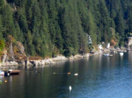 Lot L Indian River Drive, North Vancouver, BC V7G 2T6 (#R2210155) :: Re/Max Select Realty