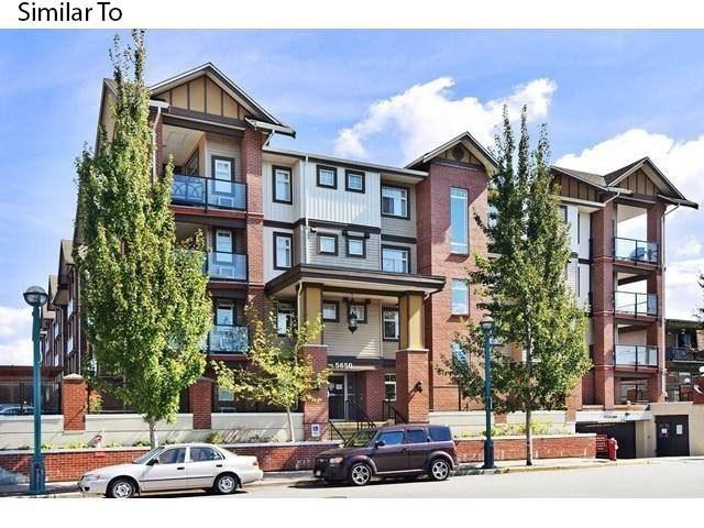 5650 201A Street #110, Langley, BC V3A 0B3 (#R2241145) :: Re/Max Select Realty