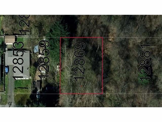 12869 113B Avenue, Surrey, BC N0N 0N0 (#R2281046) :: TeamW Realty