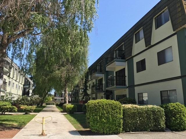 8131 Ryan Road #356, Richmond, BC V7A 2E4 (#R2282336) :: Simon King Real Estate Group