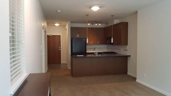 15918 26 Avenue #124, Surrey, BC V3S 5K3 (#R2297422) :: JO Homes   RE/MAX Blueprint Realty