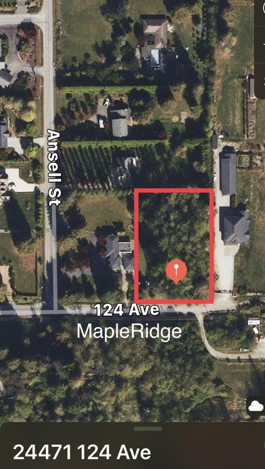 24471 124 Avenue, Maple Ridge, BC V4R 1L4 (#R2300376) :: Vancouver House Finders