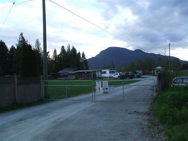 41731 Nicomen Island Trunk Road, Mission, BC V0M 1G0 (#R2311921) :: TeamW Realty