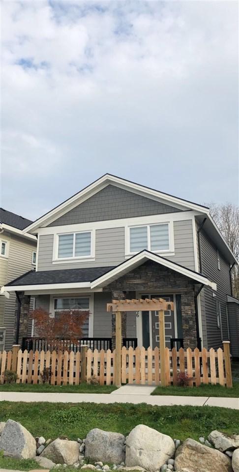 8236 204 Street, Langley, BC V2Y 0S3 (#R2322248) :: Homes Fraser Valley