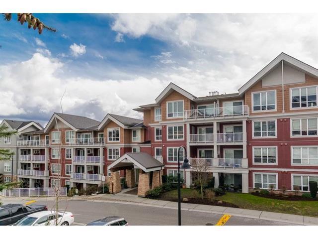 6440 194 Street #411, Surrey, BC V4N 6J7 (#R2323384) :: Homes Fraser Valley