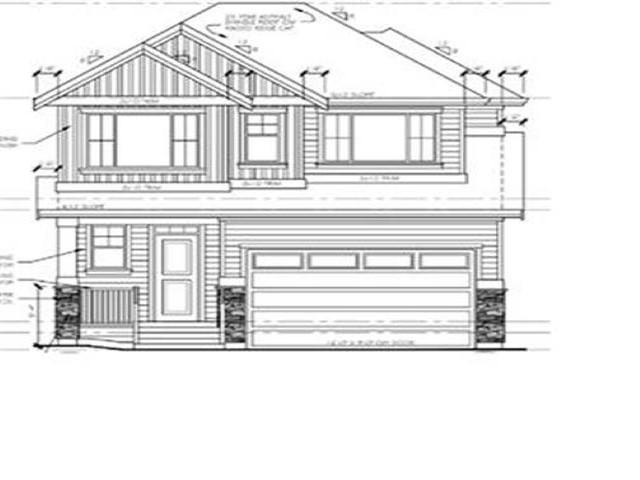 11126 241 A Street, Maple Ridge, BC V2W 0J6 (#R2359436) :: TeamW Realty
