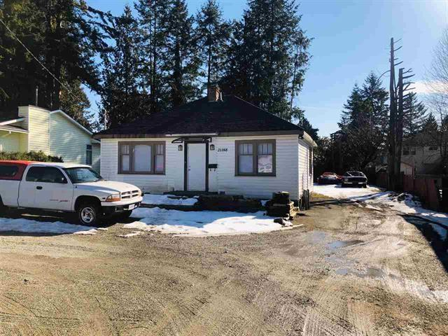 21188 Dewdney Trunk Road, Maple Ridge, BC V2X 3E9 (#R2378450) :: Royal LePage West Real Estate Services