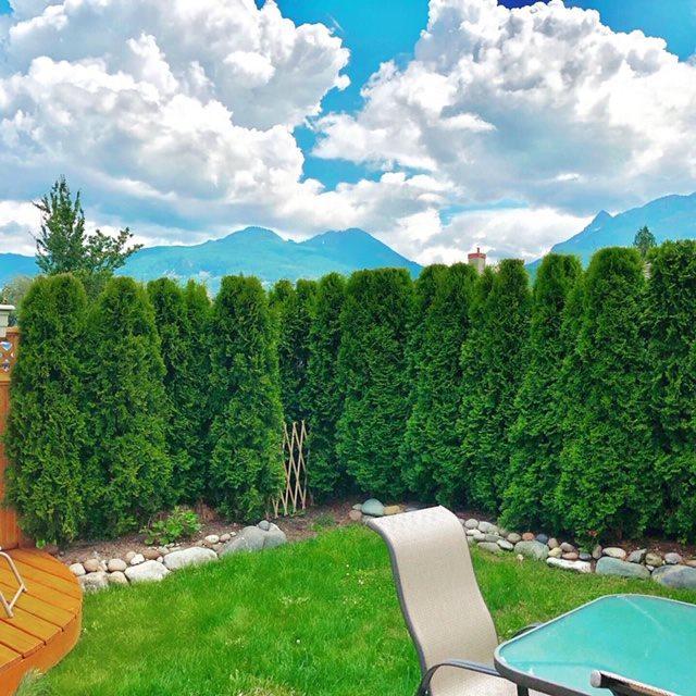 1821 Willow Crescent #20, Squamish, BC V8B 0L9 (#R2389399) :: Vancouver Real Estate