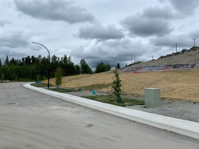 10570 Mcveety Street, Maple Ridge, BC V2W 2E5 (#R2390698) :: Vancouver Real Estate