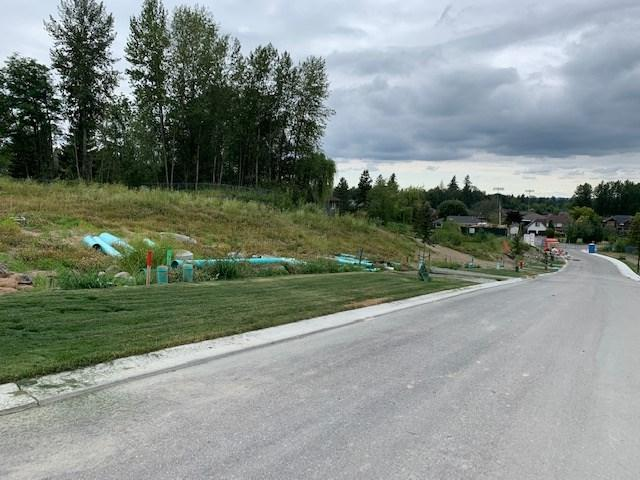 24624 105A Avenue, Maple Ridge, BC V2W 0G2 (#R2390699) :: Vancouver Real Estate