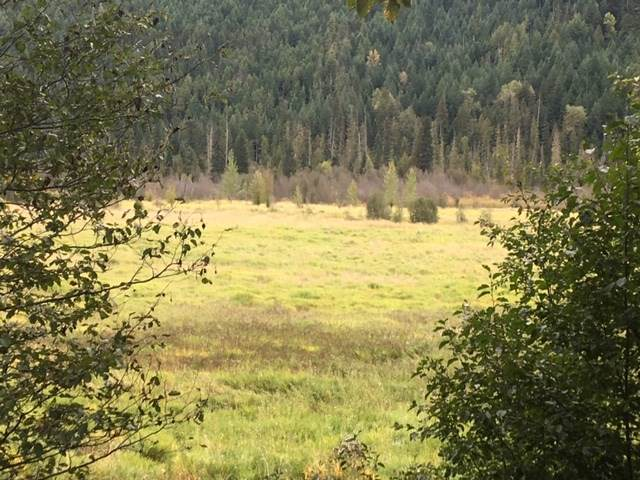 2530 Blackwater Road, Pemberton, BC V0N 2L0 (#R2422571) :: Homes Fraser Valley