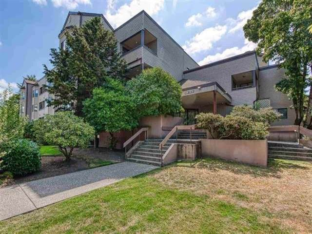 5294 204 Street #110, Langley, BC V3A 1Z1 (#R2423329) :: Ben D'Ovidio Personal Real Estate Corporation | Sutton Centre Realty