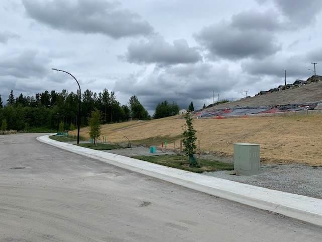 24612 105A Avenue, Maple Ridge, BC V2W 2E5 (#R2428931) :: RE/MAX City Realty