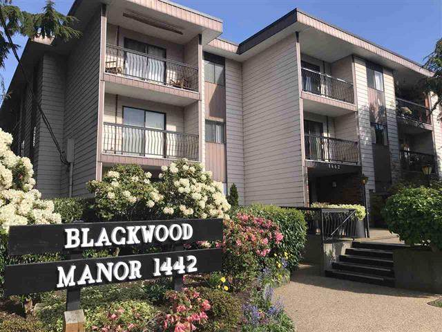 1442 Blackwood Street #111, White Rock, BC V4B 3V4 (#R2430759) :: RE/MAX City Realty