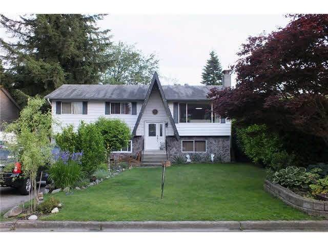 21920 Laurie Avenue, Maple Ridge, BC V2X 7V8 (#R2437995) :: RE/MAX City Realty