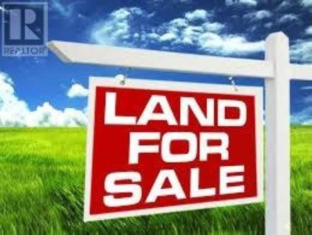 7843 10TH Avenue, Burnaby, BC V3N 2S2 (#R2449077) :: RE/MAX City Realty