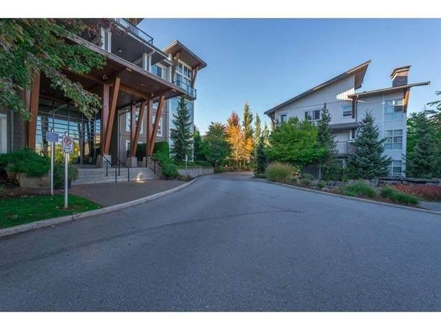 6688 120 Street #123, Surrey, BC V3W 1T8 (#R2499561) :: Ben D'Ovidio Personal Real Estate Corporation | Sutton Centre Realty