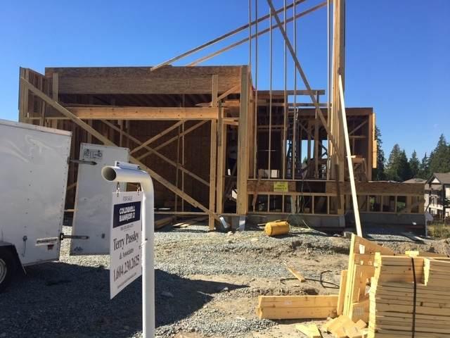 10879 Morrisette Place, Maple Ridge, BC V2X 0A6 (#R2501307) :: 604 Home Group