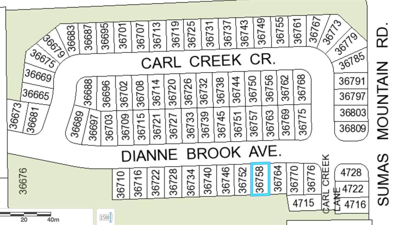 36758 Dianne Brook Avenue - Photo 1