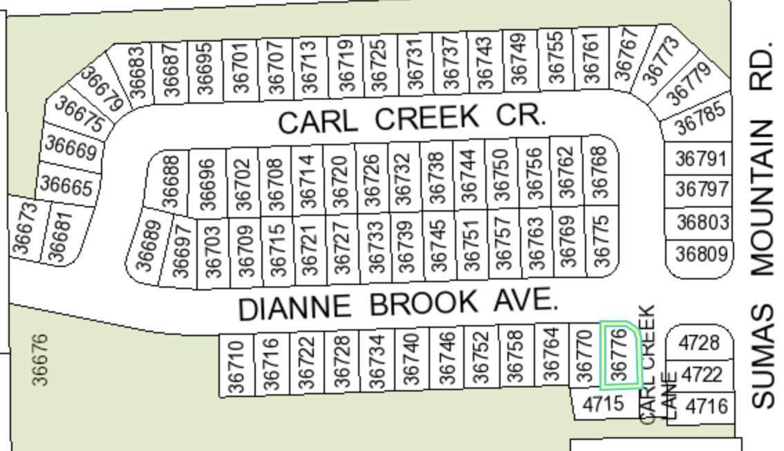 36776 Dianne Brook Avenue - Photo 1