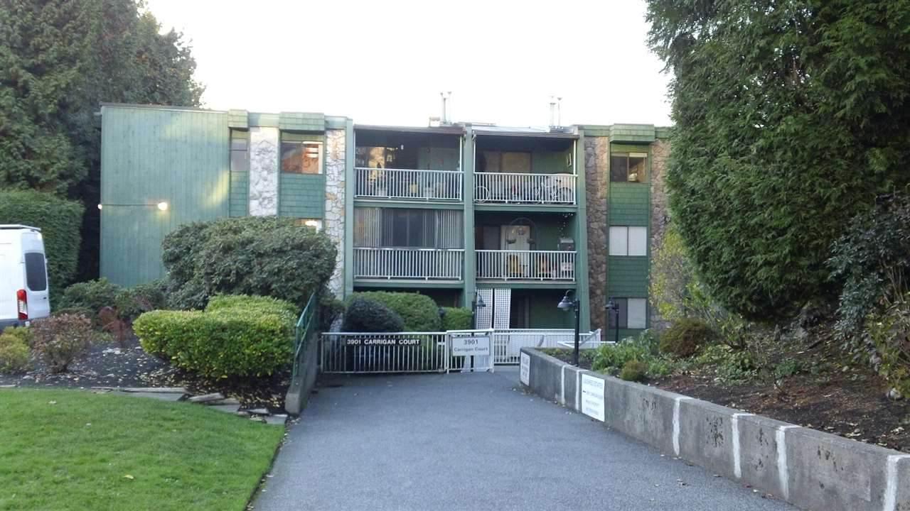 3901 Carrigan Court - Photo 1