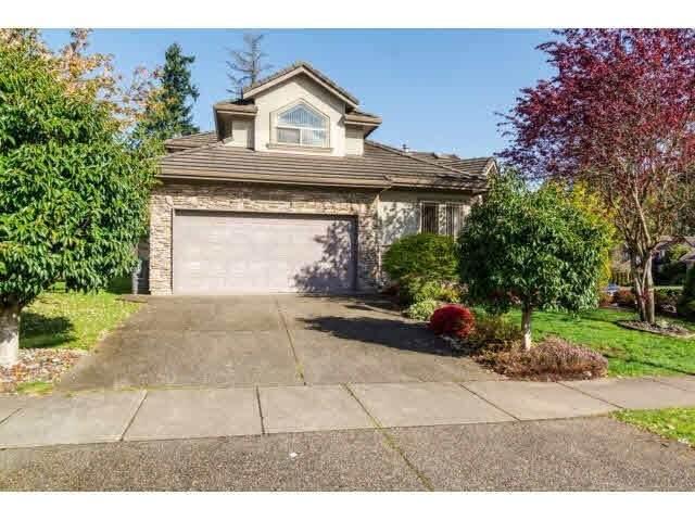 16565 108A Avenue, Surrey, BC V4N 5B9 (#R2542158) :: RE/MAX City Realty