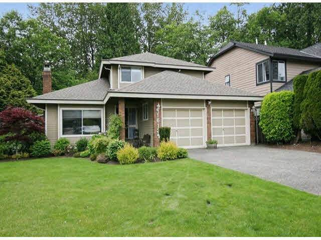 16134 Brookside Grove, Surrey, BC V4N 1S8 (#R2542525) :: RE/MAX City Realty