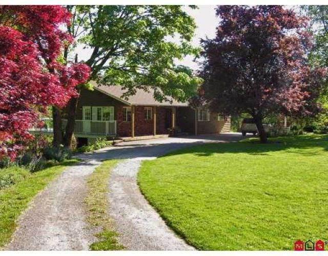 19545 78 Avenue, Surrey, BC V4N 6C7 (#R2563206) :: Macdonald Realty