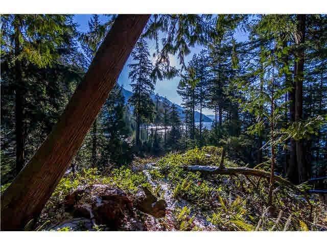723 Mineral Creek Crescent Lt 121, Squamish, BC V0N 1J0 (#R2568096) :: 604 Realty Group
