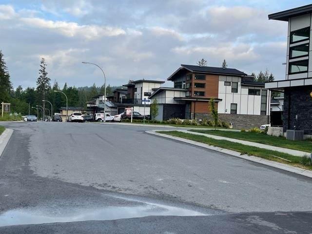 36696 Carl Creek Crescent, Abbotsford, BC V3G 0H4 (#R2573992) :: Premiere Property Marketing Team