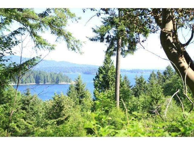 618 Gower Point & Block 1 Shaw, Gibsons, BC V0N 1V8 (#R2579367) :: RE/MAX City Realty