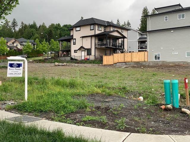 13706 232A Street, Maple Ridge, BC V4R 2G5 (#R2583138) :: 604 Home Group