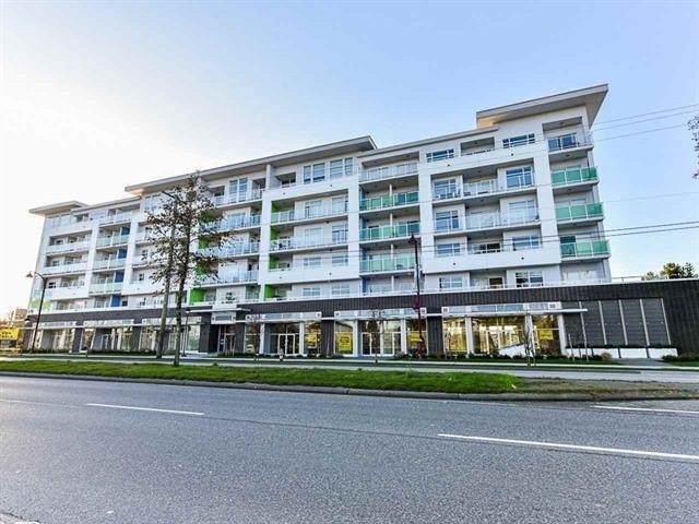 9015 120 Street #207, Delta, BC V4C 0E3 (#R2593146) :: Ben D'Ovidio Personal Real Estate Corporation | Sutton Centre Realty