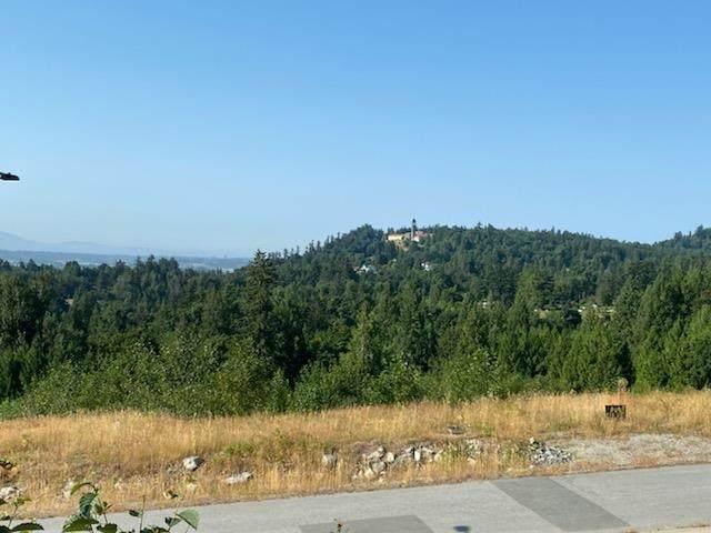 9174 Hatzic Ridge Drive, Mission, BC V2V 0A7 (#R2600758) :: Ben D'Ovidio Personal Real Estate Corporation | Sutton Centre Realty