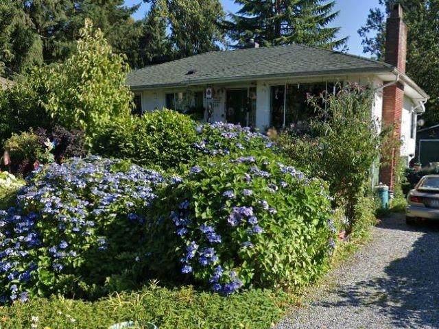 13650 110A Avenue, Surrey, BC V3R 2B1 (#R2603361) :: Initia Real Estate