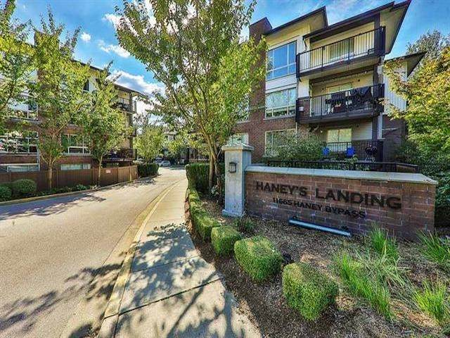 11665 Haney Bypass #212, Maple Ridge, BC V2X 8W9 (#R2606886) :: Ben D'Ovidio Personal Real Estate Corporation   Sutton Centre Realty