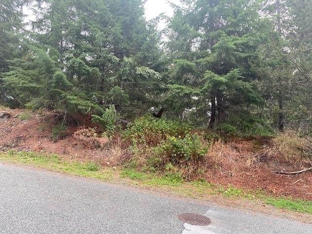 9460 Emerald Drive, Whistler, BC V8E 0G5 (#R2620907) :: RE/MAX City Realty