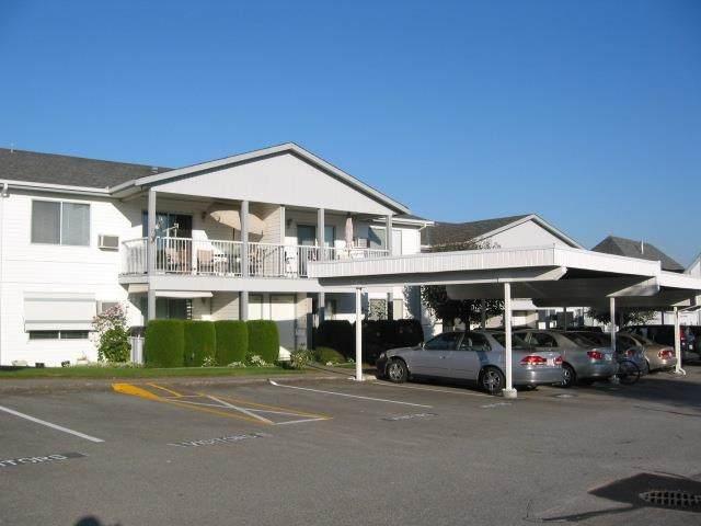 32691 Garibaldi Drive #215, Abbotsford, BC V2T 5T7 (#R2622622) :: RE/MAX City Realty